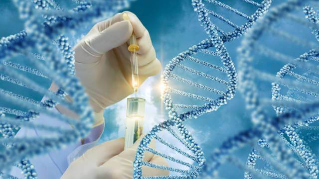 https://www.benzinga.com/news/19/09/14469474/collaboration-agreement-signed-between-genetic-technologies-and-translational-genomics-research-inst