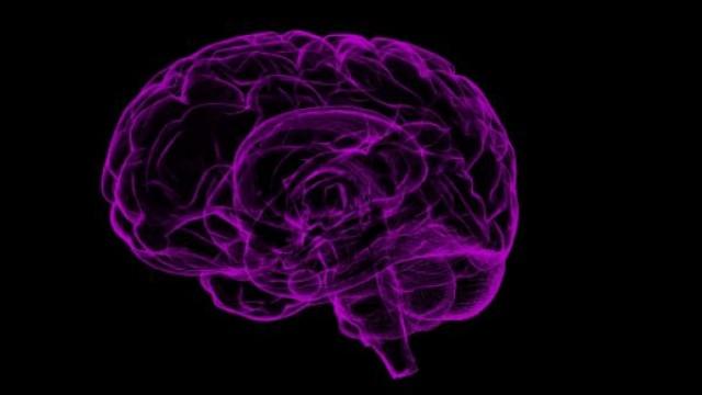 https://www.benzinga.com/general/biotech/19/09/14398467/why-neurotrope-is-plunging-on-heavy-volume