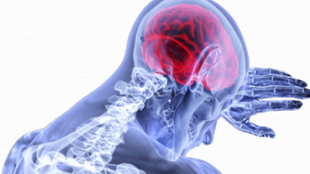 https://www.benzinga.com/general/biotech/19/09/14420692/tocagen-shares-plummet-on-failed-late-stage-brain-cancer-study