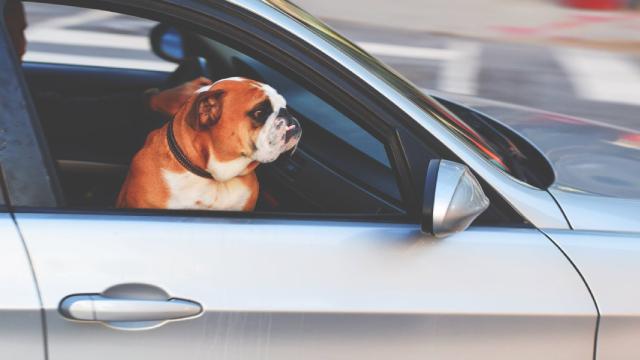 Lithia Motors Posts Record-Setting Quarter