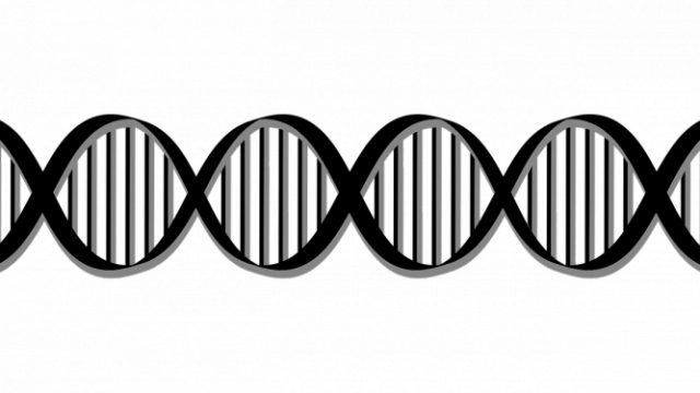https://www.benzinga.com/general/biotech/19/11/14798223/applied-dna-stock-plunges-after-share-offering-announcement
