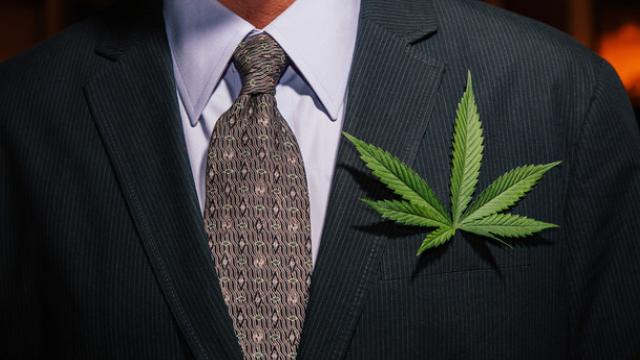 https://www.fool.com/investing/the-5-biggest-marijuana-milestones-in-2019.aspx