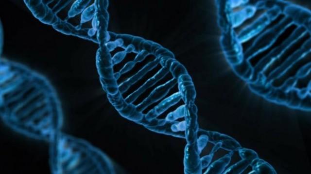 https://www.benzinga.com/general/biotech/19/12/15010032/solid-biosciences-rips-higher-on-positive-biomarker-data-for-dmd-drug