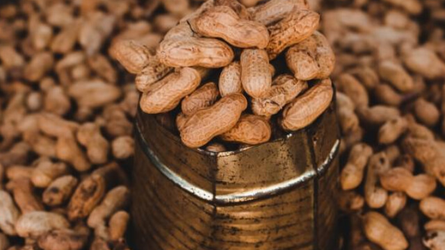 https://247wallst.com/healthcare-business/2019/10/07/major-step-forward-in-peanut-allergy-treatment/