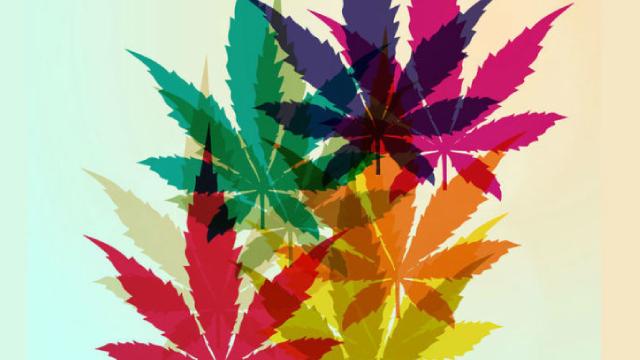 Is Aurora Cannabis